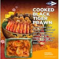 Cooked Black Tiger Prawn HOSO 26/30